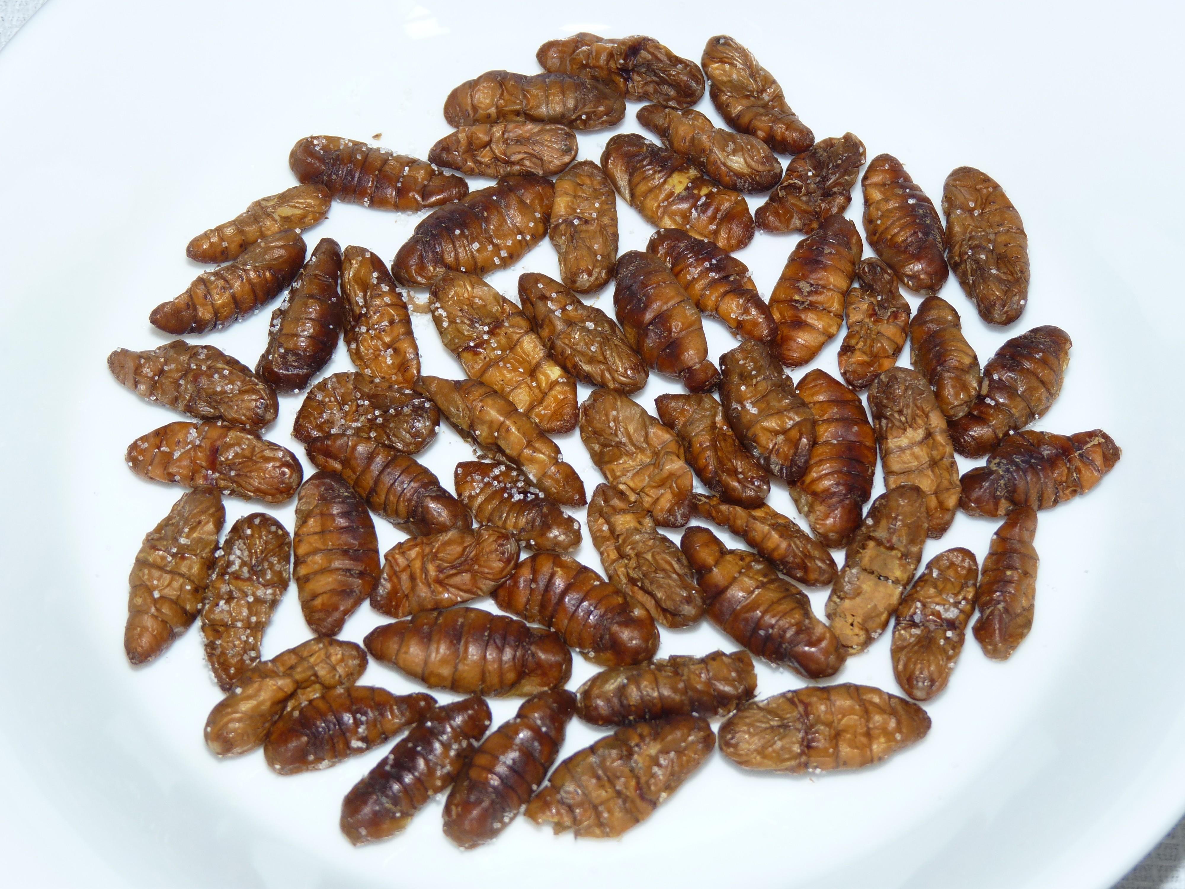 insectes comestibles ustensiles de cuisine. Black Bedroom Furniture Sets. Home Design Ideas